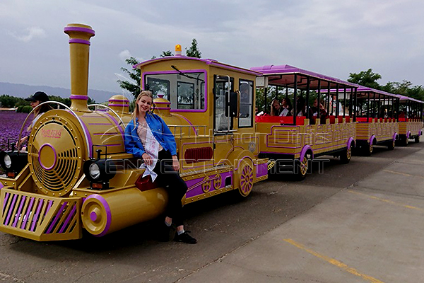 Antique Trackless Train Is Available in Dinis